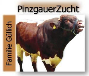 Metzgerei Güllich